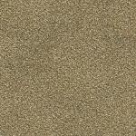 Abingdon Stainfree Tweed Cool Beige Carpet