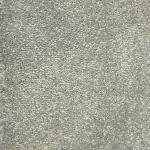 Abingdon Stainfree Sophistication Platinum Carpet