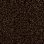 Rio Grande Rich Truffle Carpet