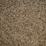 Stainaway Harvest Heathers Blonde Oak Carpet