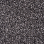 Stainfree Rustique Ash Grove Carpet