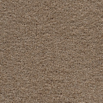 Tuftex Twist Cocoa Carpet