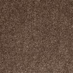Tuftex Twist Glaced Coffee Carpet