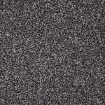 Stainfree Rustique Ash Grove Carpet